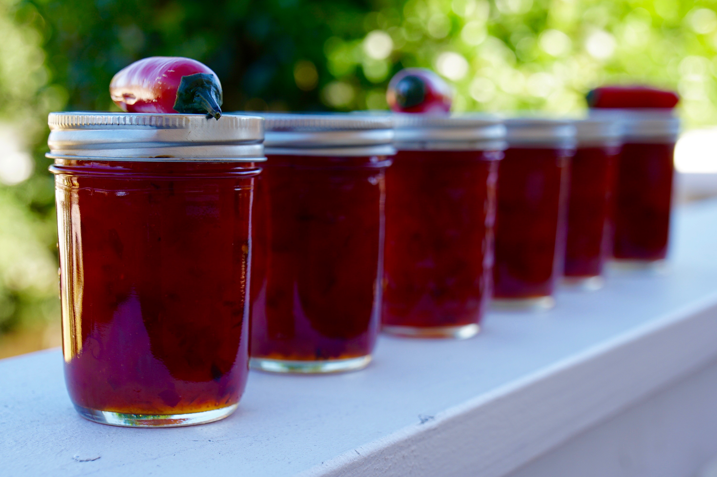 Low Sugar Pepper Jelly – No Special Equipment Needed!