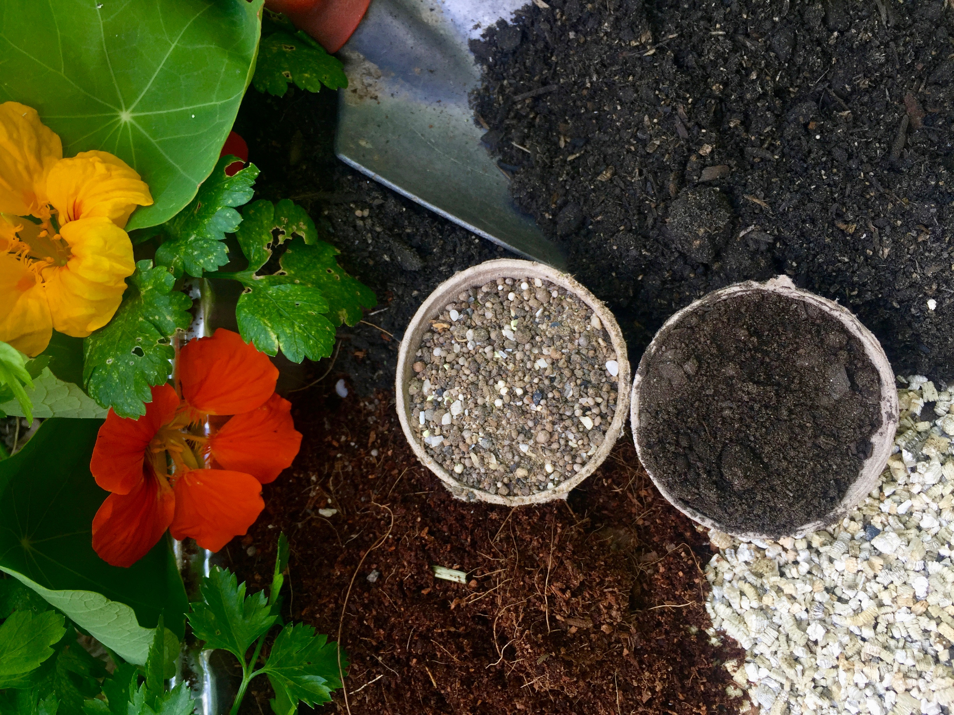 DIY Potting Mix Recipe