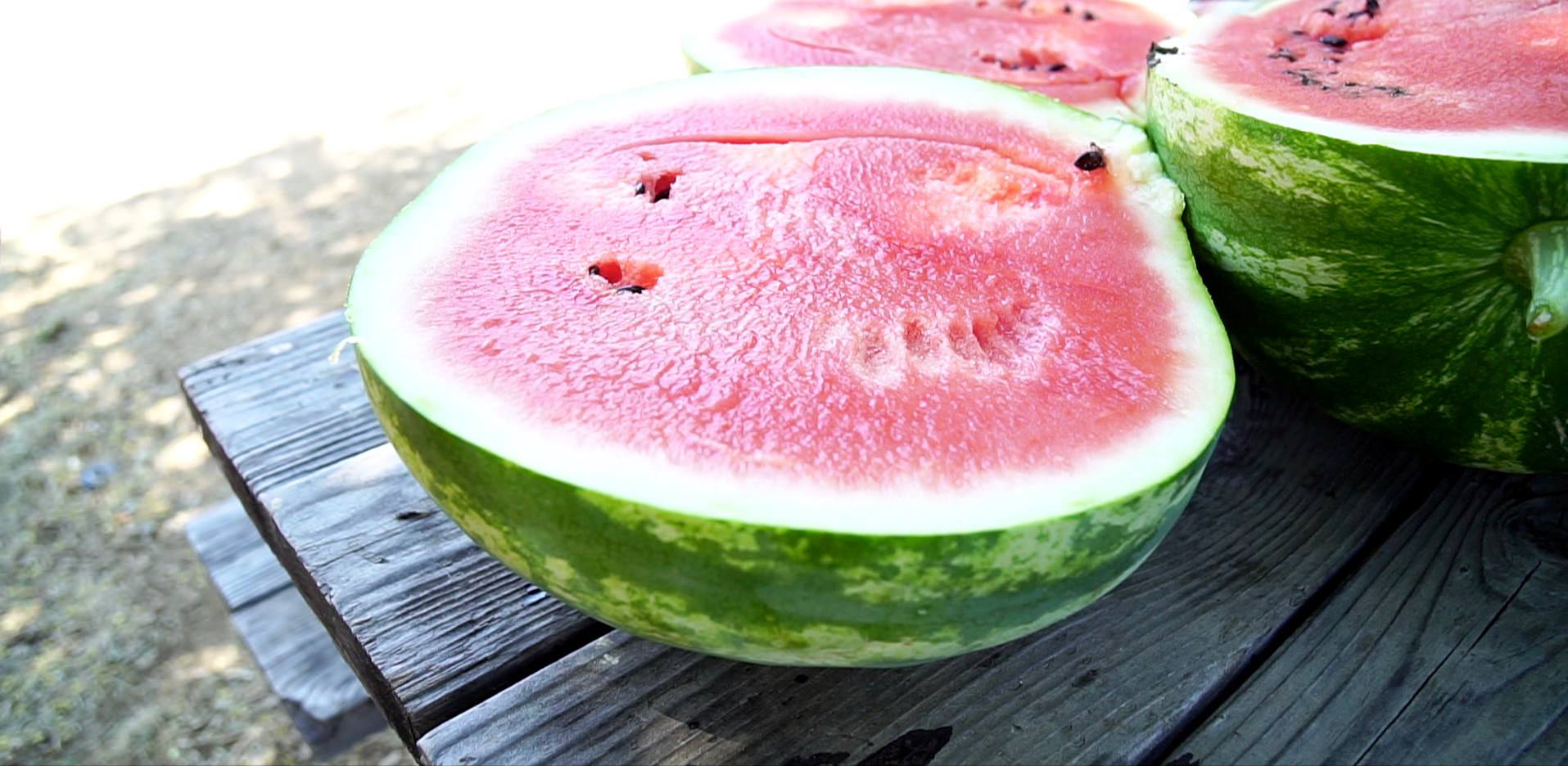 Growing Watermelon in a Container – 3 Tips for Success